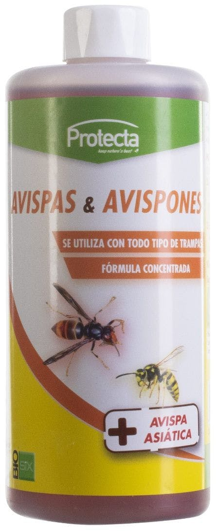 Concentrated attractant liquid for wasps and flies (Avispaclac)